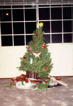 Debbie Burton's one lonely Christmas tree