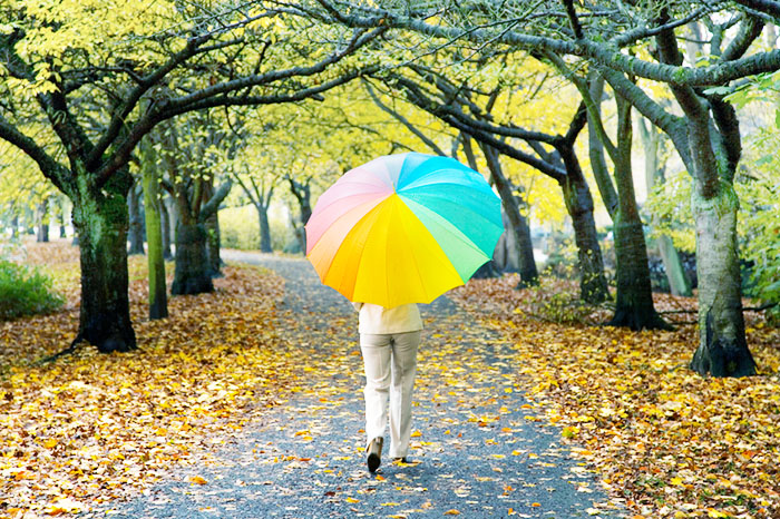 Woman with multi colored umbrella walking under tree canopy