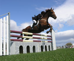 Show horse clearing a hurdle