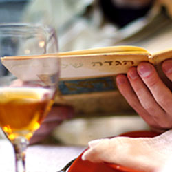 Passover reading during a seder