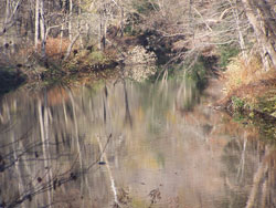 Western Pennsylvania landscape