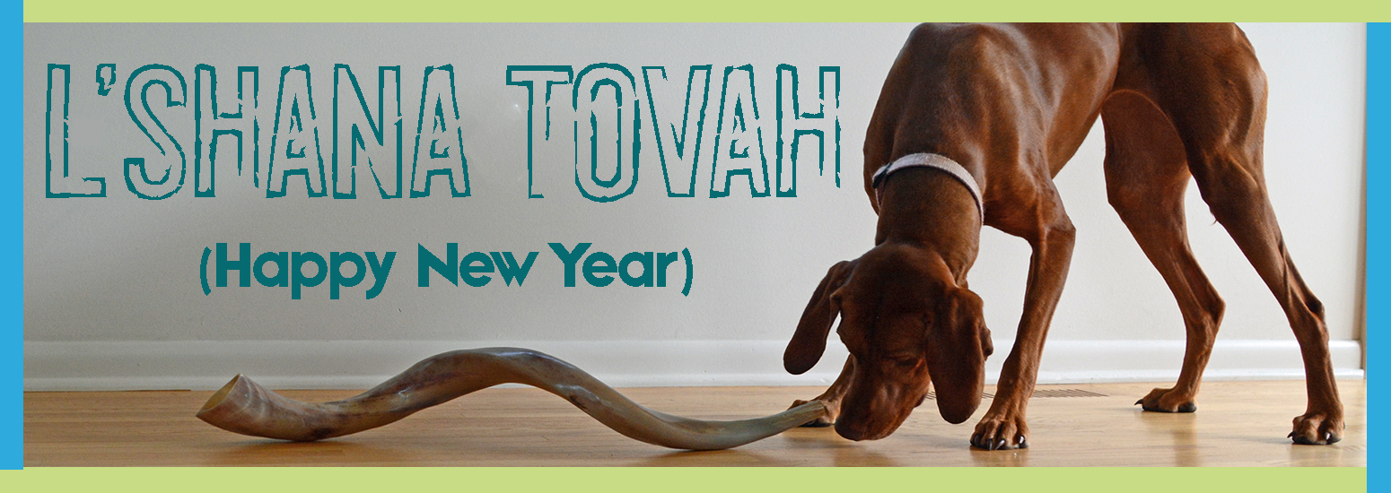 High Holy Days image dog and shofar